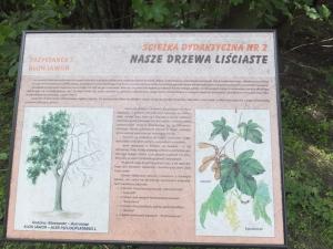Wycieczka do Łodzi - czerwiec 2017
