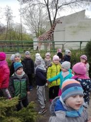 Wycieczka do łódzkiego zoo - 2017